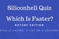 Which Is Faster Quiz nature edition