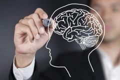 FP-draw-brain