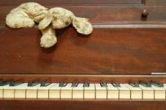 FP-piano-teddy