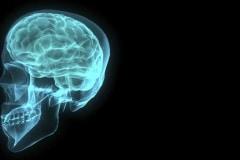 FP-thinking-brain