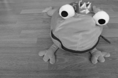 FP-toy-frog