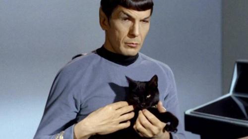 Funny Star Trek Picture 4