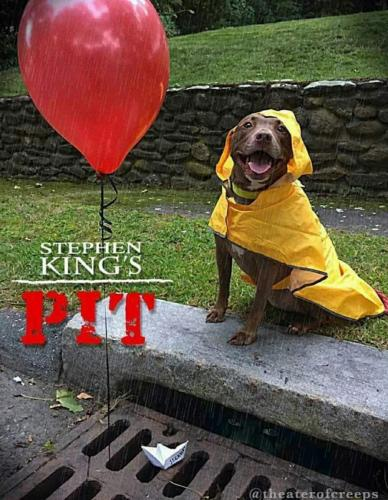 Stephen King's latest movie Pit